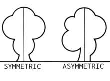 Asymmetric (PSF).png